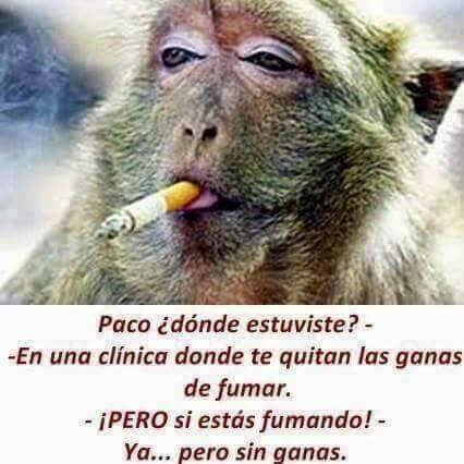 clinica para quitar las ganas de fumar funciona ahora fuma sin ganas top humor en redes sociales de yecla ofertas redes sociales